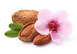 Almonds with flower