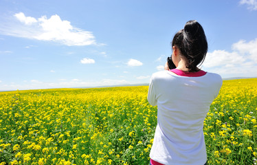 woman photographer taking photo at cole flower field,china