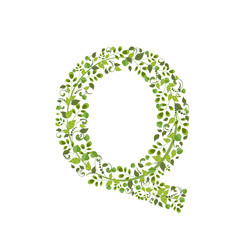 Spring green leaves. eco letter Q