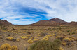 Volcano Teide in Tenerife island - Canary