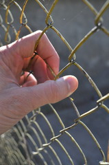 Prison hand holding fence, close-up
