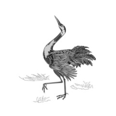 Dancing crane wildlife animal neck engraving vintage vector