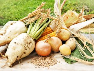 Feldfrüchte für Erntedank