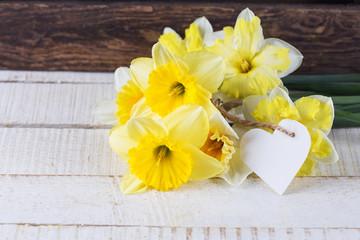 Fresh daffodils