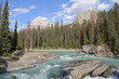 Mountain River - Yoho National Park, Canada