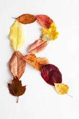 Herbstbuchstabe R