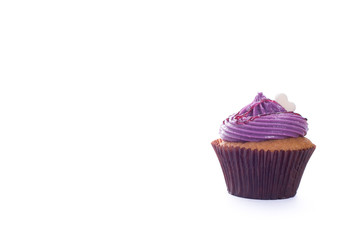 Blueberry Cup cake on white background