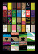 set of various vector business cards