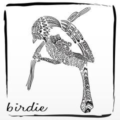 bird, birdie, pattern,