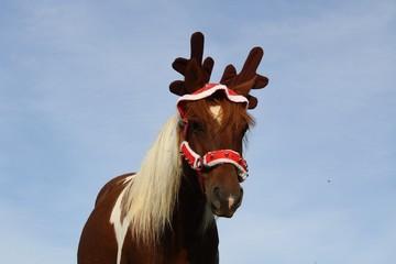 Jument habillée de renne de Noël