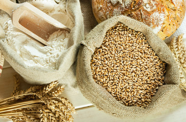 Bread, flour and grain
