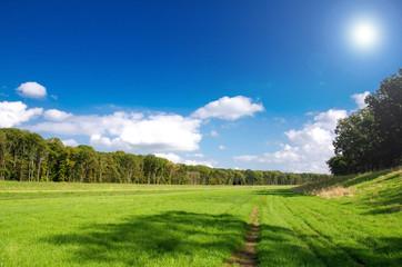 romantische Landschaft, Wiese, Sonne, grün