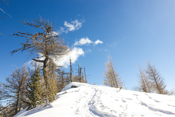 panorama di montagna invernale