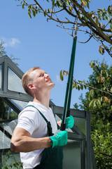 Gardener cropping branch