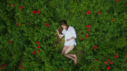 CRANE MOTION: Young woman lying in green grass among poppies