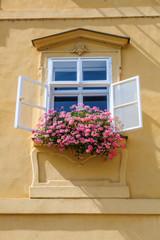 malerische Ansicht eines Fensters mit Blumenschmuck