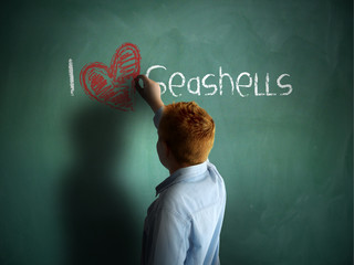 I love Seashells. Schoolboy writing on a chalkboard.