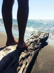 In piedi su un tronco al mare