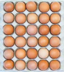 Eggs in paper container