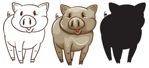 Sketches of a pig