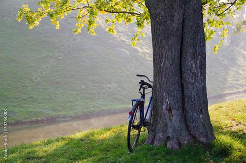 Sunny September morning in the park Nesvizhsky - 70784898