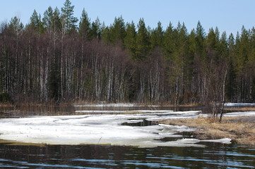 Spring  in Karelia, North of Russia