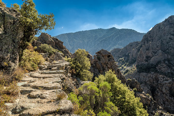 Scala di Santa Regina trail in central Corsica