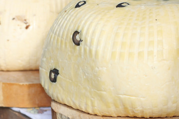 background of white cheese with olives