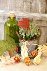 Blätterfall im Herbst & Ziermais