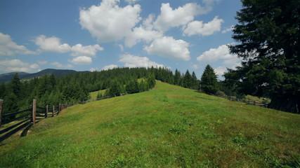 Pasture on mountain