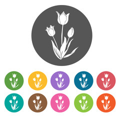 Tulip icon. Flower icon set. Round  colourful 12 buttons. Vector
