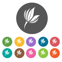 Freesia icon. Flower icon set. Round  colourful 12 buttons. Vect