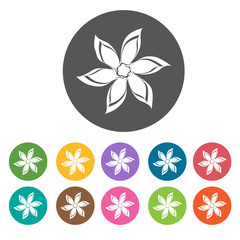 Hyacinth icon. Flower icon set. Round  colourful 12 buttons. Vec