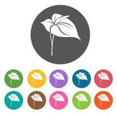 Anthurium icon. Flower icon set. Round  colourful 12 buttons. Ve