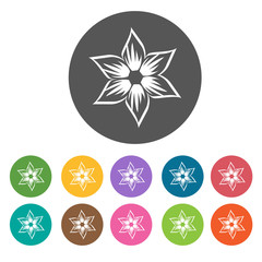 Random blooming flower icon. Flower icon set. Round  colourful 1