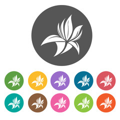 Water flowering plant icon. Flower icon set. Round  colourful 12