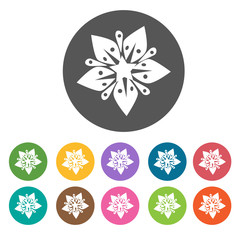 Lily flower icon. Flower icon set. Round  colourful 12 buttons.