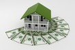 3d house on Pile of money.