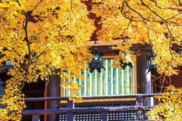 Tanzan Shrine at fall