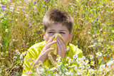 Boy with allergic rhinitis in  meadow poster