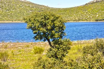 Laguna endorreica, La Alberquilla, Mestanza, vulcanismo