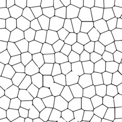 Black and white texture of cracked ground