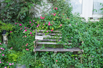 Old Wooden Bench in the garden for vintage decorate