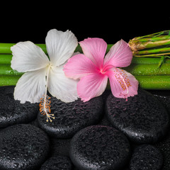 spa setting of white, pink hibiscus flowers and natural bamboo o