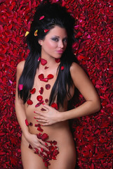Charming woman lying nude on red roses petals
