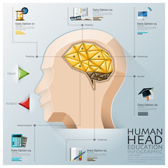 Human Head With Brain Three Dimension Polygon Education Infograp