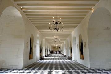 シュノンソー城のギャラリー ロワール フランス