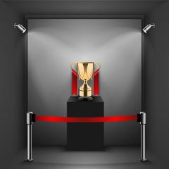 Gold trophy kept on shelf
