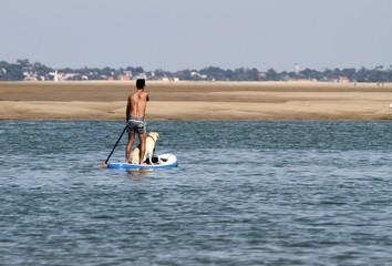 homme et son chien sur une planche de surf