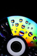 Water on Cd